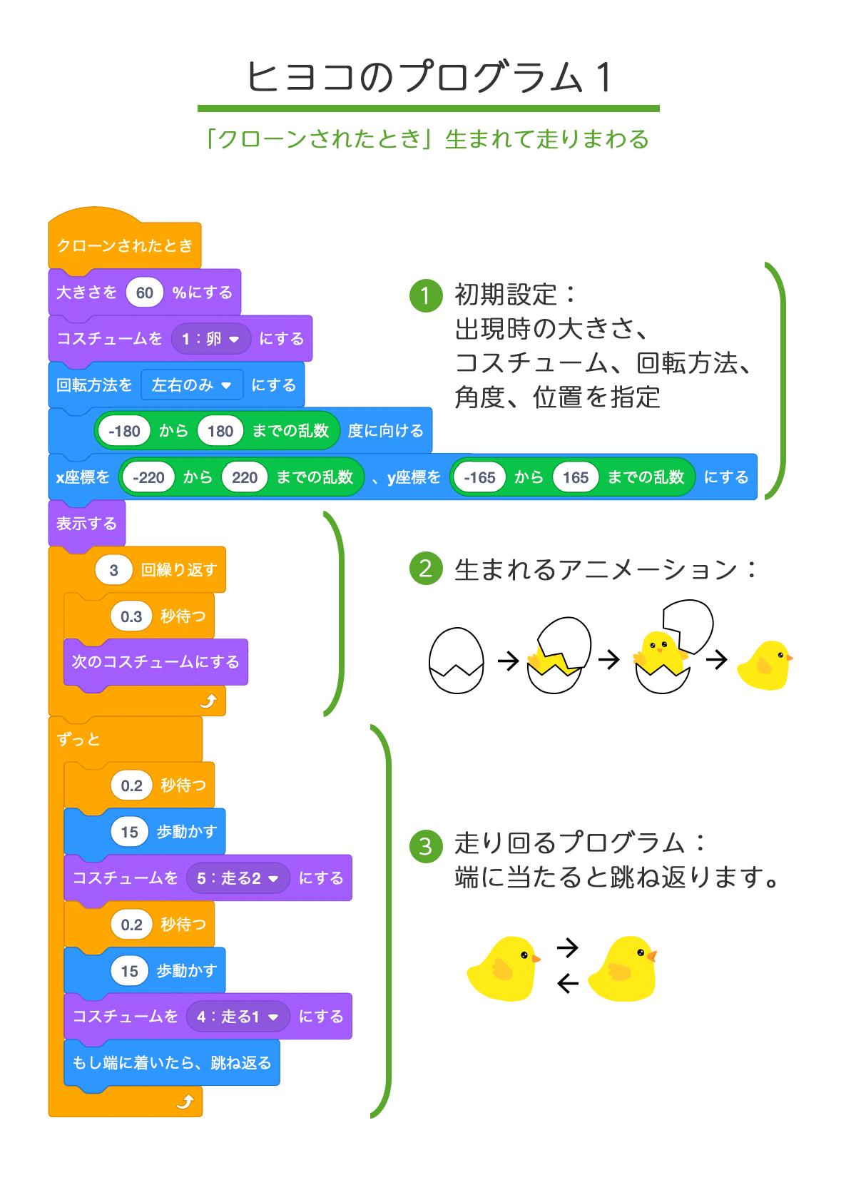 ヒヨコのプログラム